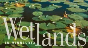 Wetlands in MN